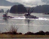 Sitka Opening Day for Herring