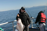 Kodiak Island Alaska Fishing