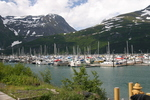 Whittier Alaska Harbor